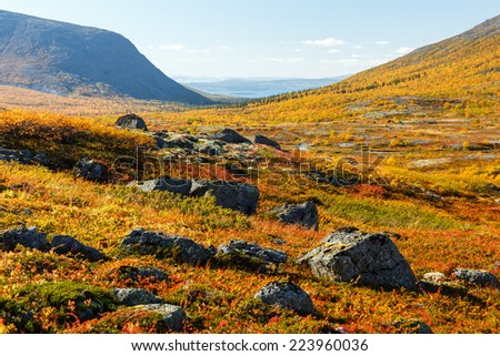 Colorful rocky tundra in front of Malaya Belaya river valley between mountains Alyavumchorr and Judychvumchorr in Hibiny mountains above the Arctic Circle, Russia - stock photo