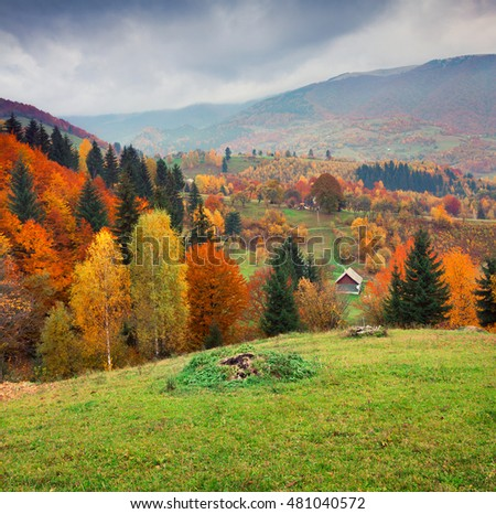 Colorful rural scene in the Kvasy village, Transcarpathian, Ukraine, Europe. Beautiful autumn landscape in the mountains. Artistic style post processed photo.