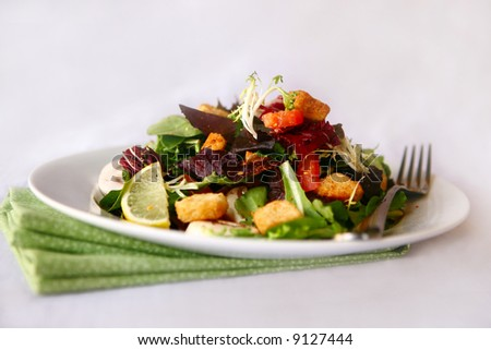 Colorful Salad Focus is on Top of Salad - stock photo