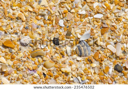 Colorful sand, stones and shells at beach as Natural background, backdrop or wallpaper. - stock photo