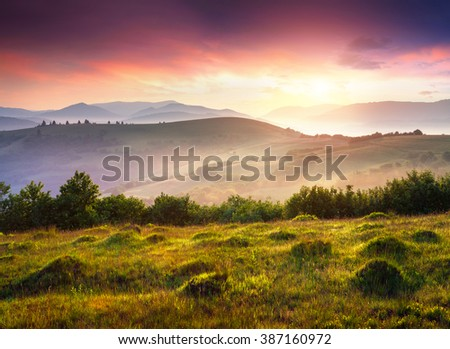 Colorful scene in foggy mountains. Carpathians sunrise in June. Splendid landscape with with rolling hills and valleys in golden morning light. Ukraine, Europe.