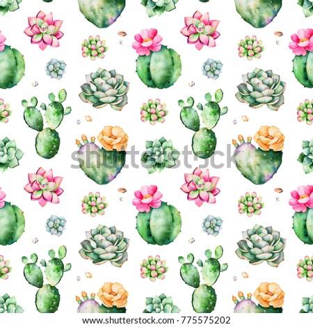 Colorful seamless pattern succulents plants pebble stock colorful seamless pattern with succulents plants pebble stonesbranches and morerfect for m4hsunfo