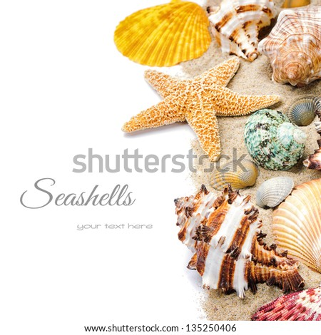 Colorful seashells with sand isolated over white - stock photo