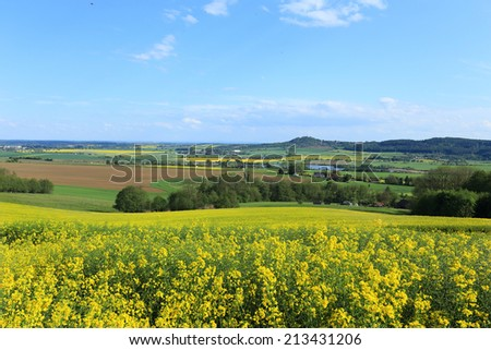 Colorful spring Landscape with Rape in Bohemian Paradise, Czech Republic - stock photo