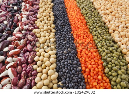 colorful striped rows of lentils, beans, peas, soybeans, legumes, seed, backdrop