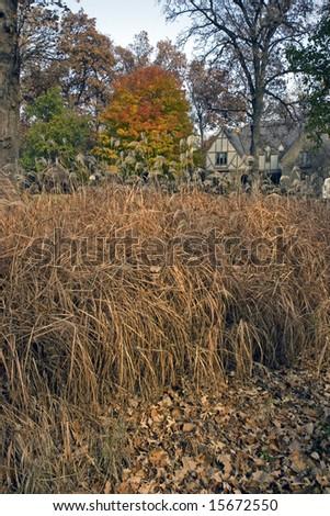 Colorful Suburban Autumn - stock photo