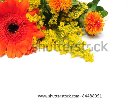 Colorful summer flowers over white background