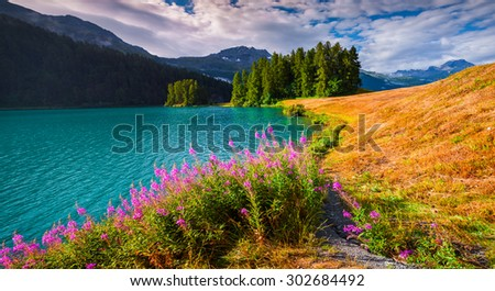 Colorful summer morning on the Champferersee lake. Silvaplana village in the morning mist. Alps, Switzerland, Europe. - stock photo