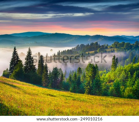 Colorful summer sunrise in the Carpathian mountains.  - stock photo