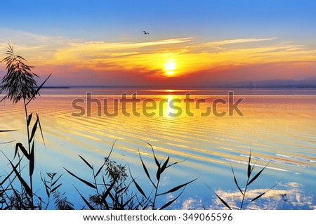 colorful sunset at sea - stock photo