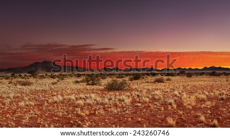 Colorful sunset in Kalahari Desert, Namibia - stock photo