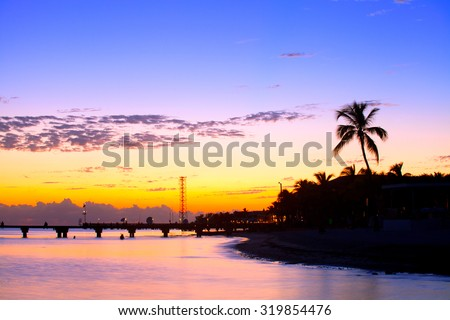 Colorful sunset in Key West Florida with palm trees silhouettes - stock photo