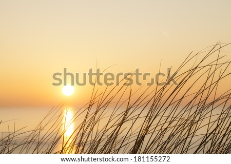 Colorful sunset in sandy dunes - stock photo