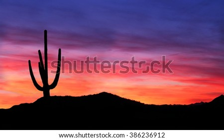 Colorful Sunset in the Arizona Desert with silhouette of Saguaro Cactus