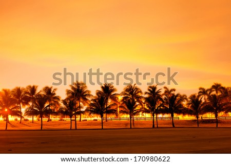 Colorful sunset or sunrise landscape with silhouettes of palm trees - stock photo
