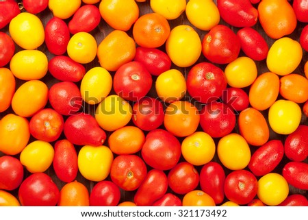Colorful tomatoes. Yellow, orange and red. Closeup texture - stock photo