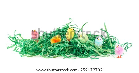 Colorful toy chickens over the green ribbons as an artificial grass isolated on white background as an Easter composition - stock photo