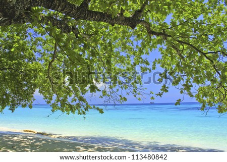 colorful trees along the shore. - stock photo