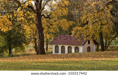 Colorful trees this side a yellow building, lawn in the foreground.  Lawn covered of leaves. Shadows on the ground. - stock photo