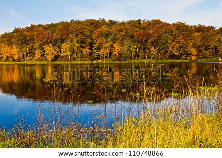 Colorful trees with orange and rust autumn leaves reflected in lake, with gorgeous blue sky and white clouds
