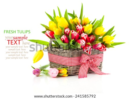 Colorful tulip blooms in a basket isolated on white - stock photo