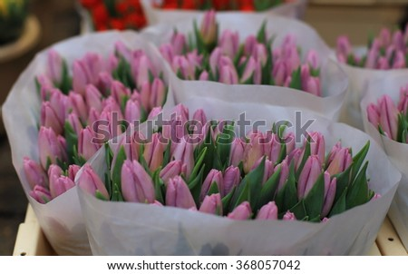 Colorful tulips on sale in Amsterdam flower market, Netherlands.  - stock photo