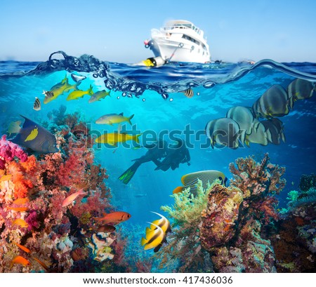 Colorful underwater offshore rocky reef with coral and sponges and small tropical fish swimming by in a blue ocean - stock photo