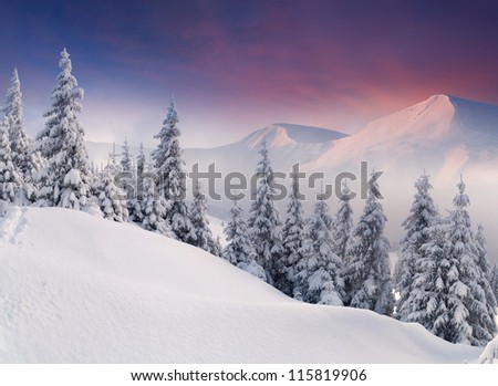 Colorful winter landscape in the mountains. Sunrise - stock photo