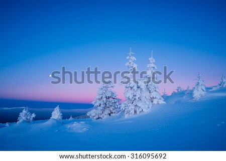 Colorful winter landscape. Morning twilight. Beauty in nature. Christmas view - stock photo