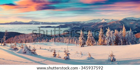 Colorful winter panorama of snowy mountains. Fresh snow at frosty morning glowing first sunlight. Instagram toning. - stock photo