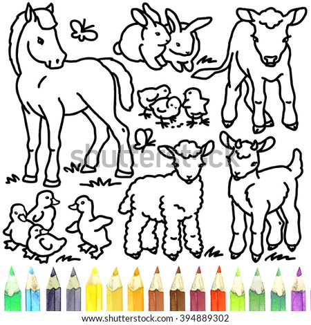 Coloring Book Cute Baby Animals Foal Rabbit Calf Chick Gosling