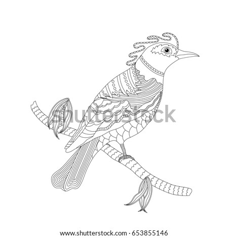Coloring Book For Adults And Children Fantasy Bird On A Branch Black White