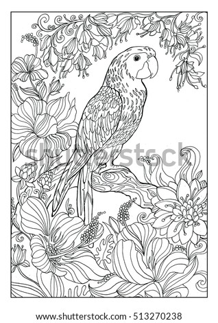 Coloring Book Twenty Pages Parrot Page Stock Illustration ...