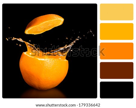 Colour palette with complimentary swatches. Orange fuit. - stock photo