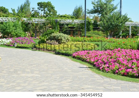 Colourful Flowers in the garden - stock photo