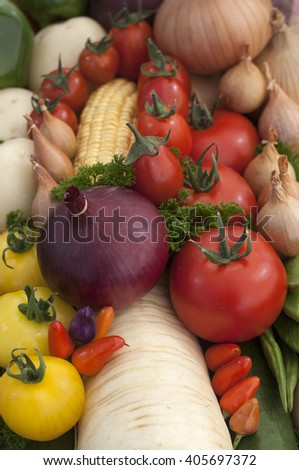 colourful mixed vegetables arranged in a pattern