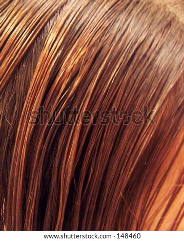combed wet hair - stock photo