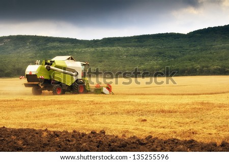 combine harvested wheat - stock photo