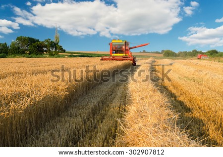 Combine harvester harvesting wheat on sunny summer day.