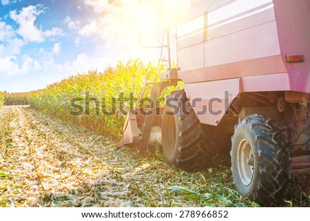 combine harvester in process of harvesting maize corn very close up view agricultural concept  - stock photo