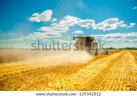 combine harvester in work - stock photo