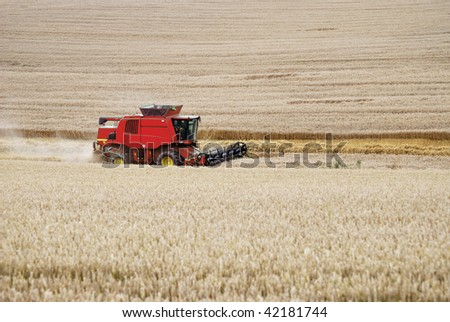Combine harvester working at a corn field.