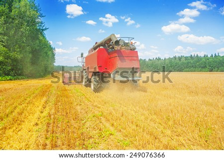 combine harvester working on wheat field rear view  - stock photo