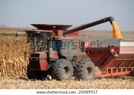 Combine harvesting corn, San Joaquin Valley, California - stock photo