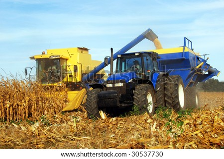 Combine harvesting maize - stock photo