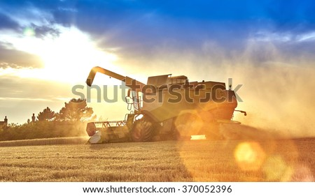 Combine harvesting on the South Downs - dramtic backlghit - stock photo