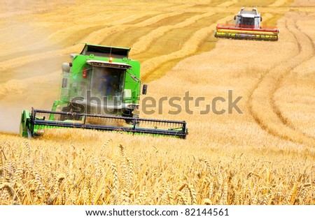 Combine harvesting wheat - stock photo