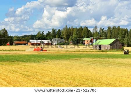 Combine harvests crop of rye - stock photo