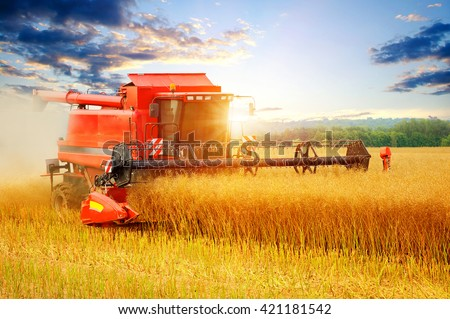 Combine working in field.