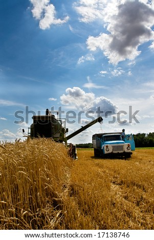Combine working in field at harvest time - stock photo